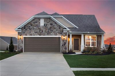 Copley Single Family Home For Sale: 550 Arbor Ln