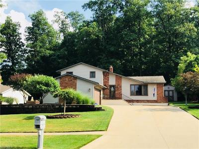 Seven Hills Single Family Home For Sale: 1450 Driftwood Dr