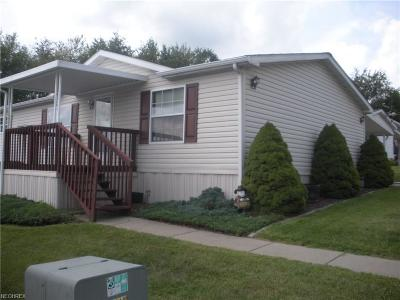 Columbiana County Single Family Home For Sale: 14980 Sprucevale Rd