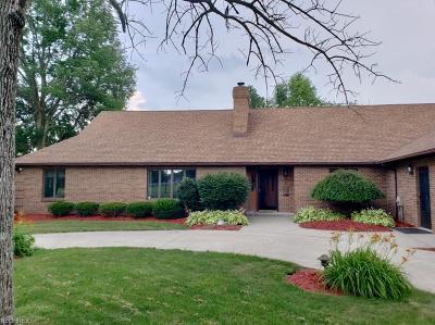 Medina Single Family Home For Sale: 1122 Granger Rd