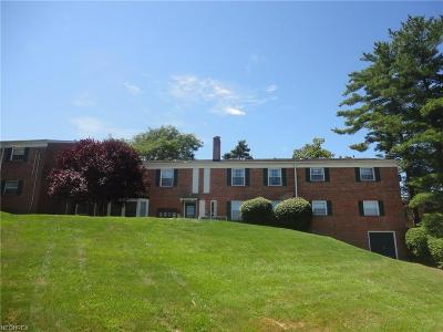 Brecksville, Broadview Heights Condo/Townhouse For Sale: 7055 Carriage Hill Dr #102