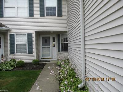 Fairport Harbor Condo/Townhouse For Sale: 1263 Watermark Ln