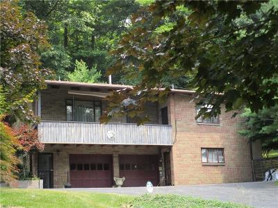 Warren Single Family Home For Sale: 1023 Niles Cortland Rd Southeast