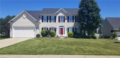 Brunswick Single Family Home For Sale: 3049 Fairmount Ct