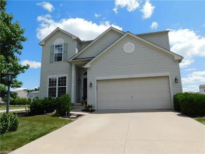 Brunswick Single Family Home For Sale: 1177 Molland Dr