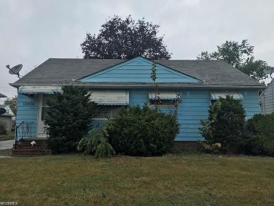 Maple Heights Single Family Home For Sale: 15905 Northwood Ave