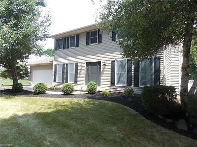 Wadsworth Single Family Home For Sale: 178 Hollybrier Dr