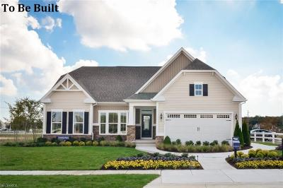 Medina Single Family Home For Sale: 5529 Boucher Cir
