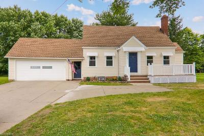 Independence Single Family Home For Sale: 6925 Brecksville Rd