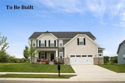 Medina Single Family Home For Sale: 260 Hooper Dr