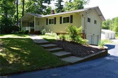 Painesville OH Single Family Home For Sale: $185,900