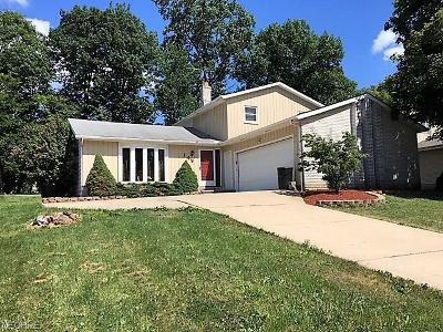 Brunswick OH Single Family Home For Sale: $174,900