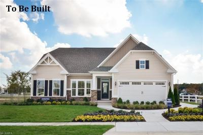 Medina OH Single Family Home For Sale: $259,000