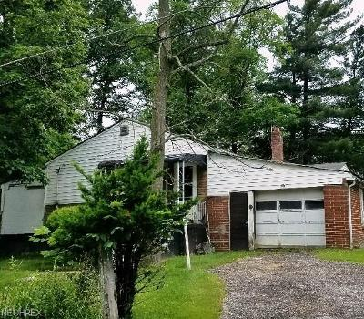 Geauga County Single Family Home For Sale: 16703 Huron St