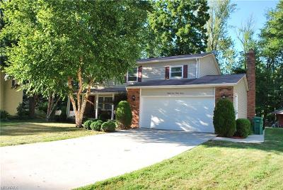 Mentor Single Family Home For Sale: 8947 Trailwood Ct