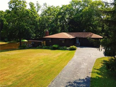 Ravenna Single Family Home For Sale: 4682 Rootstown Rd