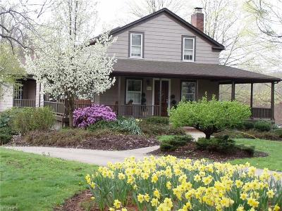 Chagrin Falls Single Family Home For Sale: 341 Meadow Ln