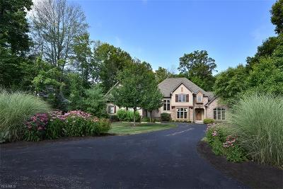 Chagrin Falls Single Family Home For Sale: 8165 Devon Ct