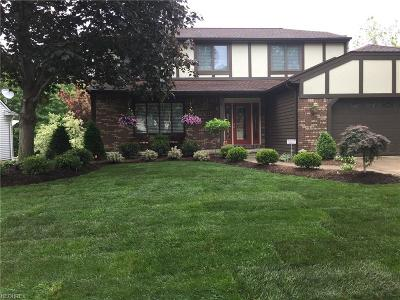 Strongsville OH Single Family Home For Sale: $253,900
