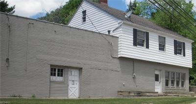Brecksville, Broadview Heights Single Family Home For Sale: 8966 Broadview Rd