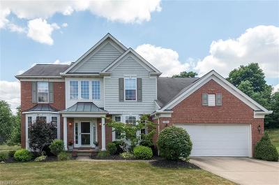 Broadview Heights Single Family Home For Sale: 150 Hartford Ct