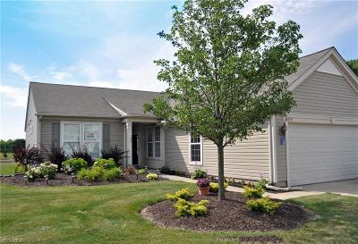 North Ridgeville Single Family Home For Sale: 38355 Kingsbury Dr