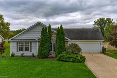 Ashtabula County Single Family Home For Sale: 734 Timber Ln