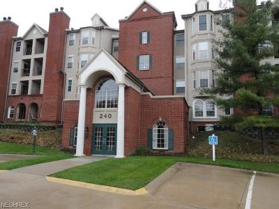 Mayfield Heights Condo/Townhouse For Sale: 240 Fox Hollow Dr #101