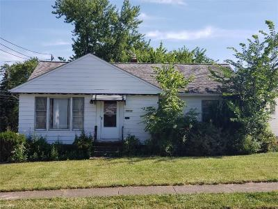 Maple Heights Single Family Home For Sale: 19118 Longview Ave