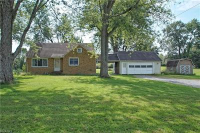Geauga County Single Family Home For Sale: 14523 Mayfield Rd