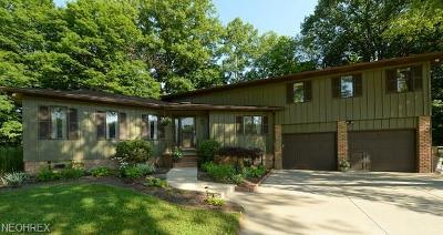 Wadsworth Single Family Home For Sale: 7787 Boneta Rd