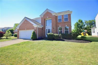 Avon, Avon Lake Single Family Home For Sale: 36101 Billingsley