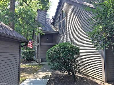 Boardman Condo/Townhouse For Sale: 1303 Red Tail Hawk Ct #6
