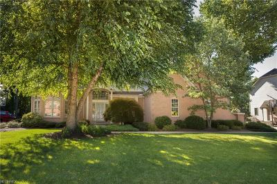 Westlake Single Family Home For Sale: 3191 Excalibur Ave