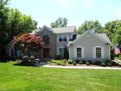 Concord Single Family Home For Sale: 8080 Carriage Hills Dr