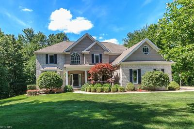 Chagrin Falls Single Family Home For Sale: 11590 Ascot Ln