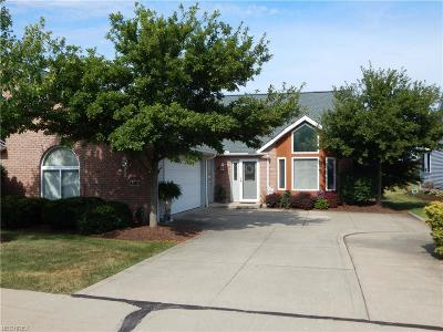 Medina OH Condo/Townhouse For Sale: $210,000