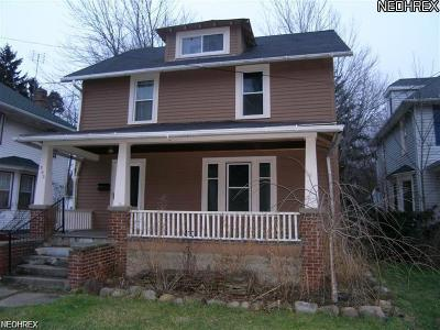 Painesville Single Family Home For Sale: 293 Liberty St