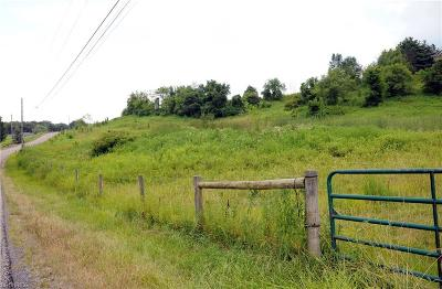 Guernsey County Residential Lots & Land For Sale: 58563 Richport Dr