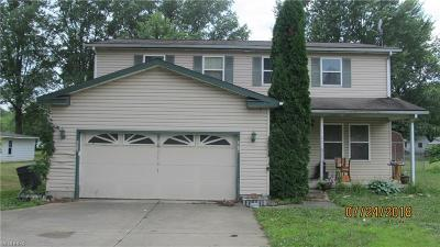 Youngstown Single Family Home For Sale: 3010 South Meridian Rd