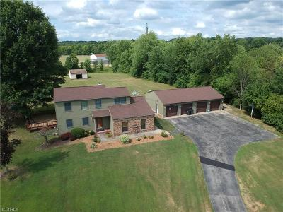 Canfield Single Family Home For Sale: 6544 Kirk Rd