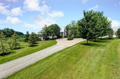 Burton Single Family Home For Sale: 13720 Hale Rd