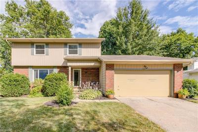 Twinsburg Single Family Home For Sale: 9013 Birchwood Dr