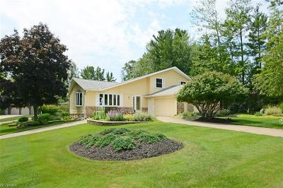 North Royalton Single Family Home For Sale: 12691 Pinebrook Dr