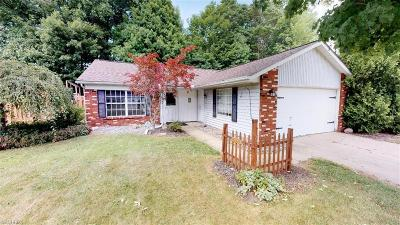Lake County Single Family Home For Sale: 6857 Dave Dr