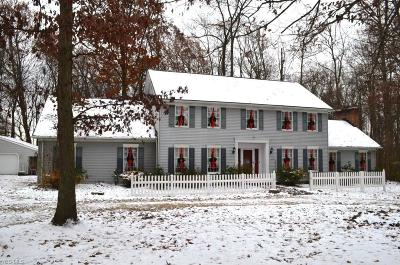 Copley Single Family Home For Sale: 221 South Medina Line Rd