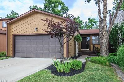 Mentor Condo/Townhouse For Sale: 9803 Country Scene Ln #5D