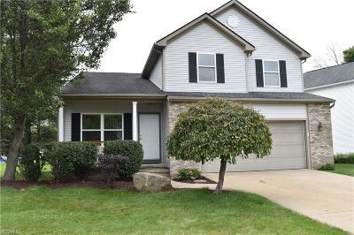 Chardon Single Family Home For Sale: 111 Cedar Glen