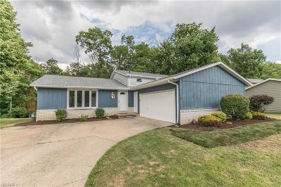Strongsville Single Family Home For Sale: 16741 Walnut Creek