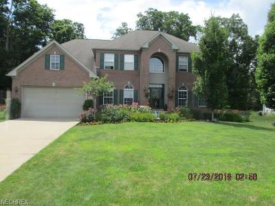 Twinsburg Single Family Home For Sale: 9356 Wallingford